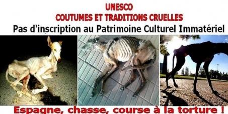 PETITION-UNESCO-contre-la-chasse-avec-les-galgos-au-PCI