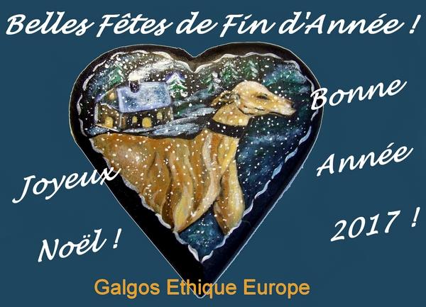 galgos-ethique-europe-voeux-2017-600