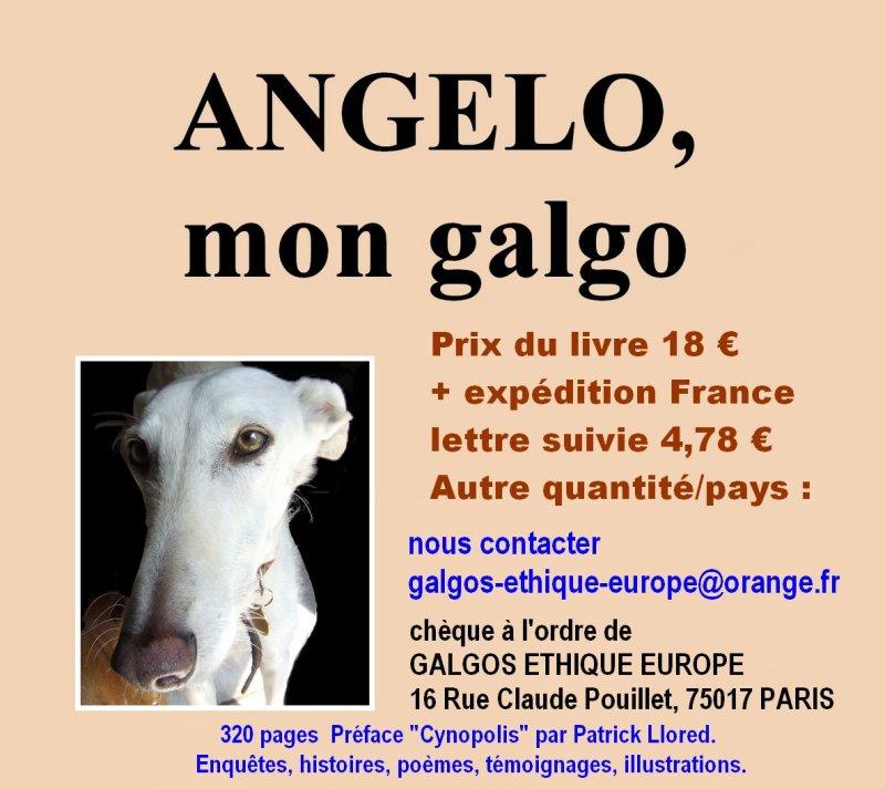 angelo-mon-galgo-prix-blog-site-panneau-definitif