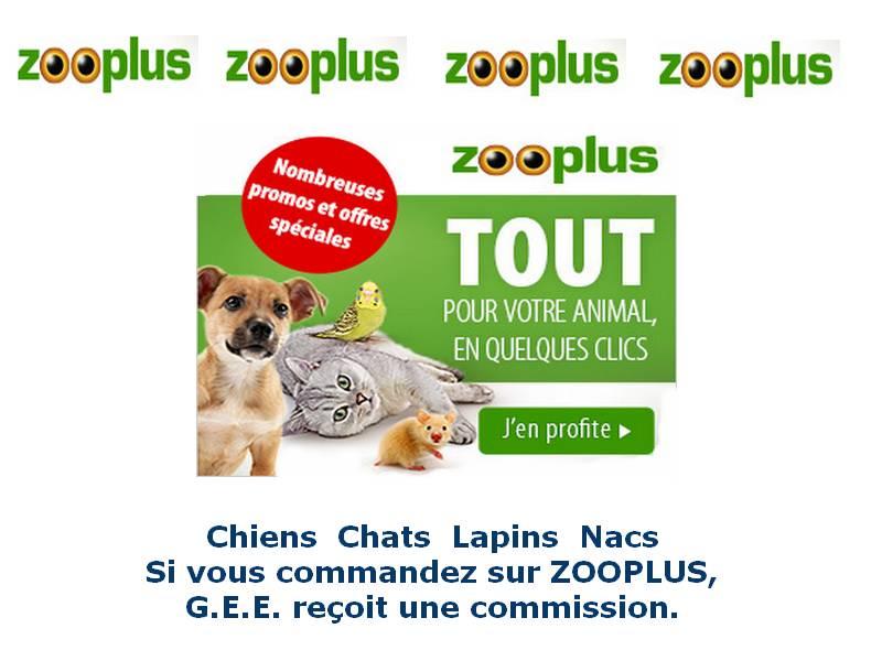 aaa-zooplus2020-galgosethiqueeurope