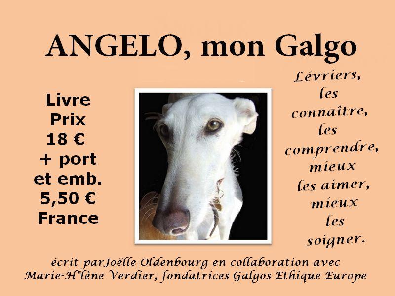 livre-angelo-mon-galgo-galgosethiqueeurope